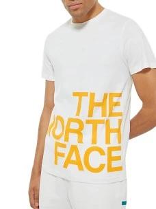T-Shirt The North Face  RegularNF0A4926-P0V Puro Cotone